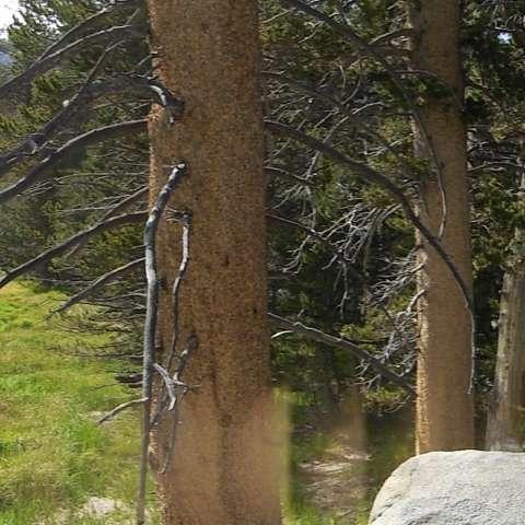 Round Valley Campground