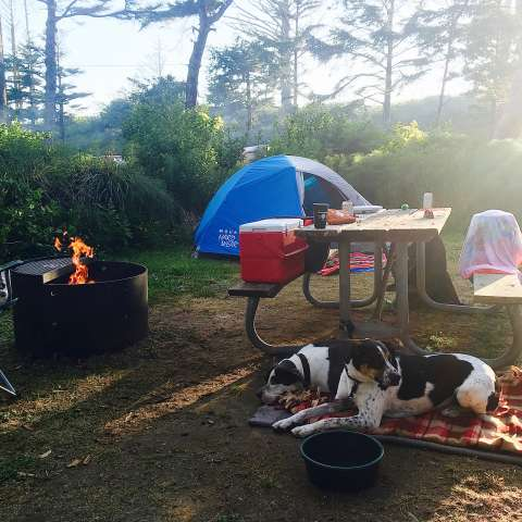 Cape Lookout Campground