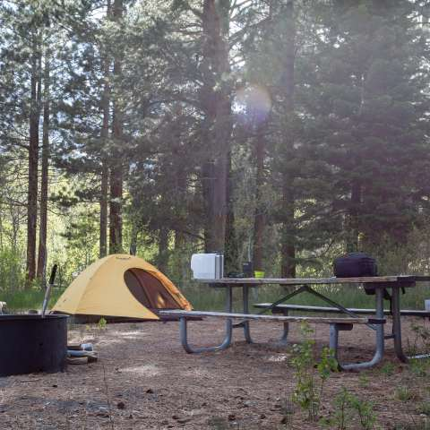 Lower Lee Vining Campground