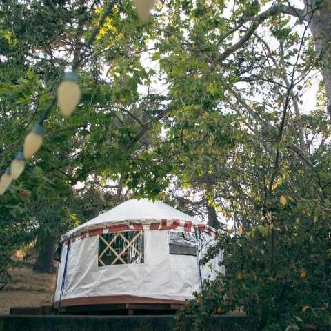 Vista History Garden Yurt