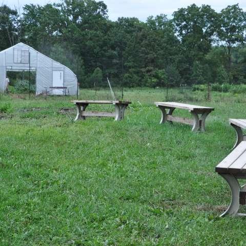 Organic Farm Near Ann Arbor