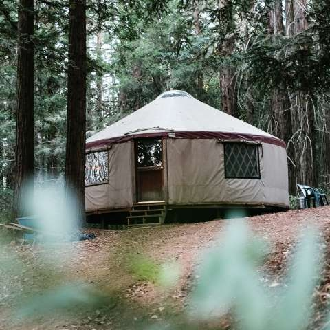Enchanted Forest Yurt