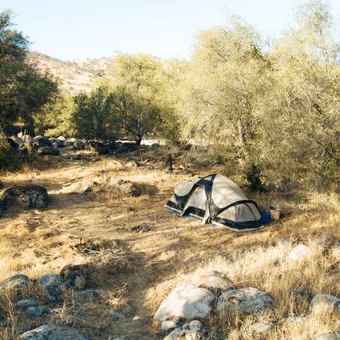 Coyote View Tent Camping