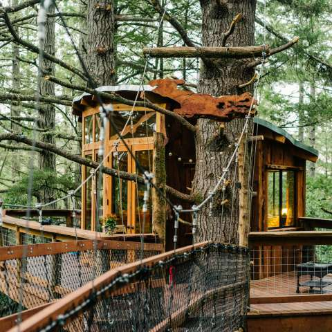 Eagle's Nest Treehouse Farmstay