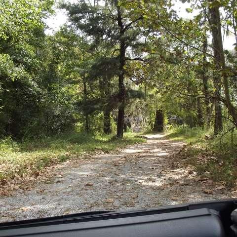 Horse Shoe Bend Rive Camp