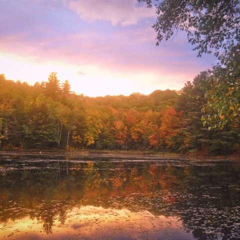Crocker Pond Campground