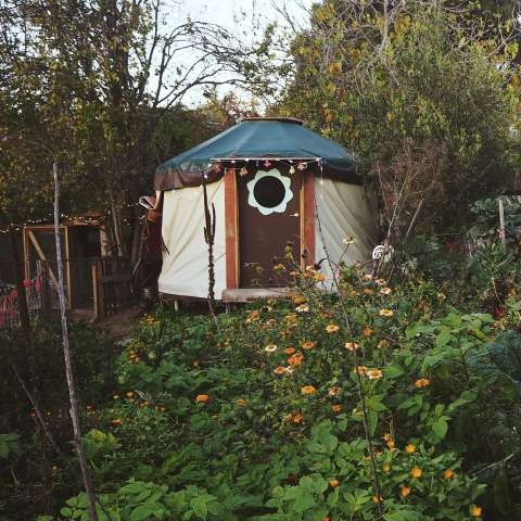 Cabin and Yurt on Urban Farm