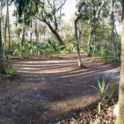 Joseph Cook's Farm Tent Site