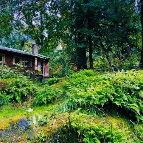 Trout Creek Wilderness Lodge