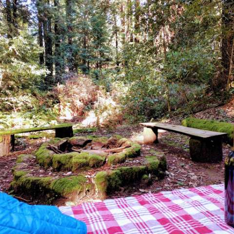 Mossy Bench Camp
