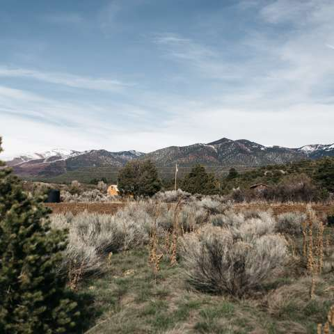 Taos Goji Farm Campsites