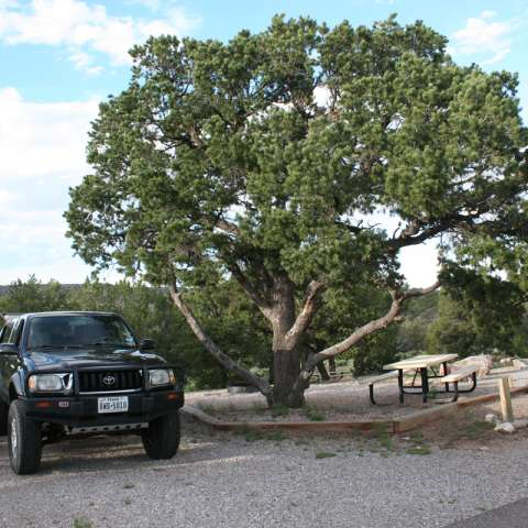 The 20 best campgrounds near san mateo new mexico for Oak motors san mateo