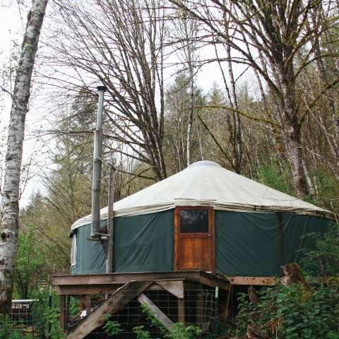 Forest Yurt/Palace