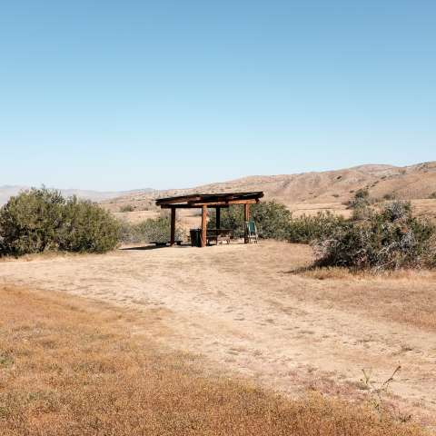 Songdog East Campsites