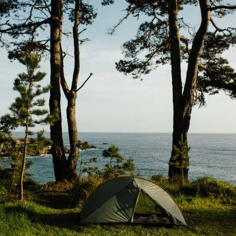 Separate Star Point Camp