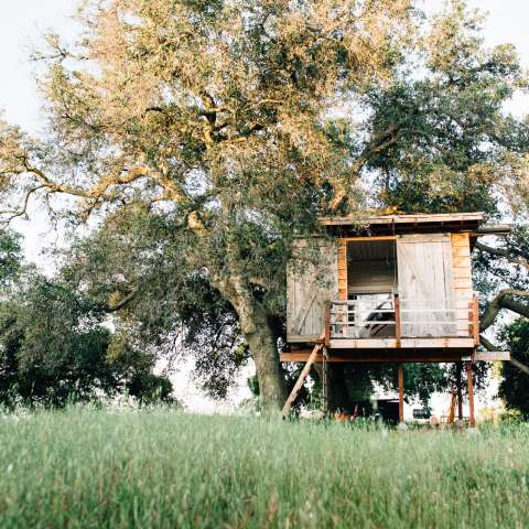 Ojai Mountaintop Treehouse