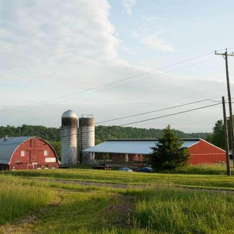 Lodge on Sustainable Farm