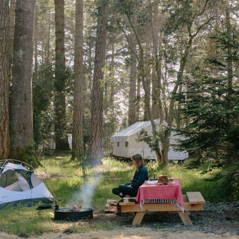 Pitch-Your-Own-Tent