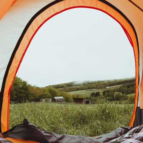 Your Tent On a Sheep Farm