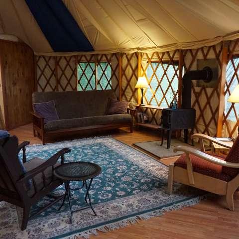 Yurt on a Forest Farm