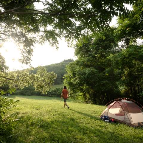 Firefly Ridge Tennessee