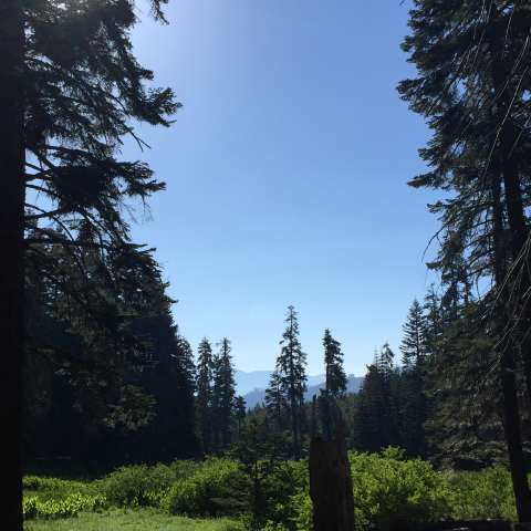 Frog Meadow Campground