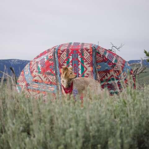 Ellison Ranch Camp