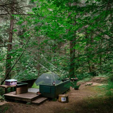 #6 Private Camping along Creek