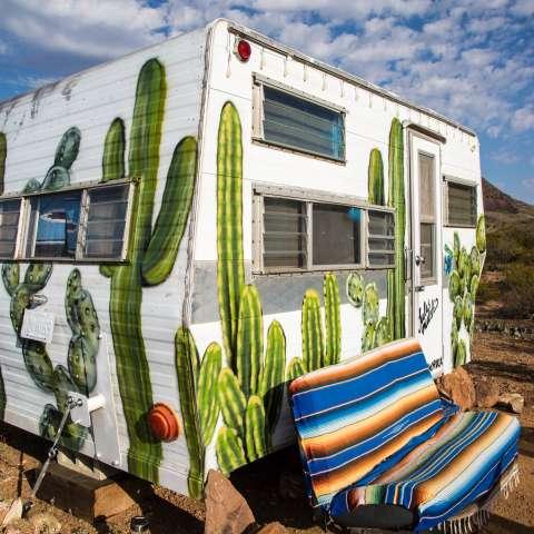 """The """"Cozy Cactus"""""""