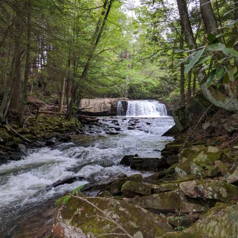 Waterfall on 2 acres in WV