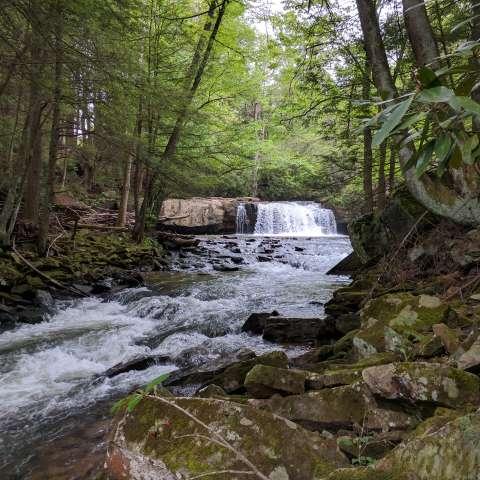 Waterfall on 2 acres in WV