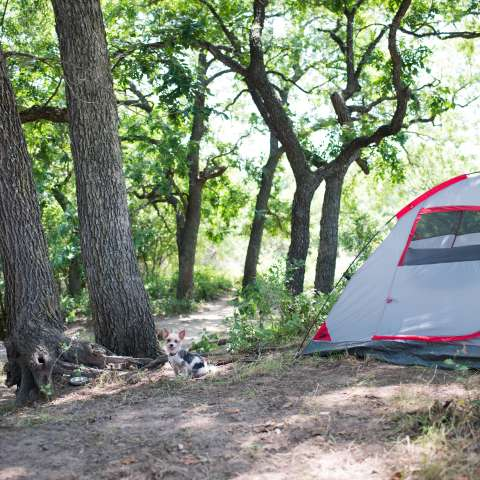 Brookside Camp