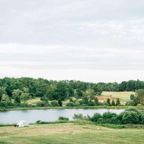 Forest Nooks & Pastoral Vistas