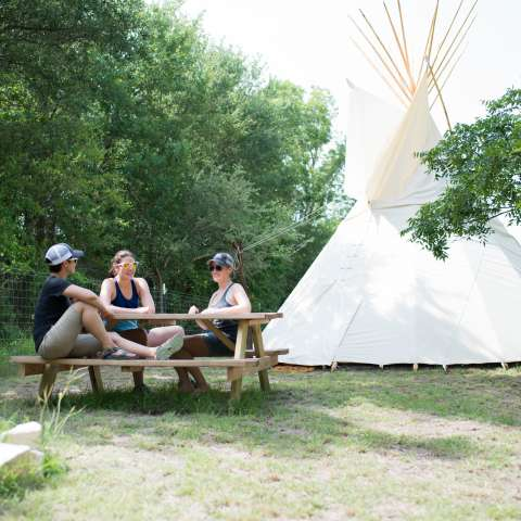 Tipi In The Orchard