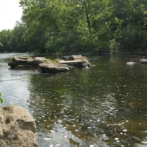 Neshaminy Creek Campsite