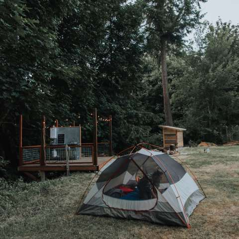 Whidbey Island Sheep Camp