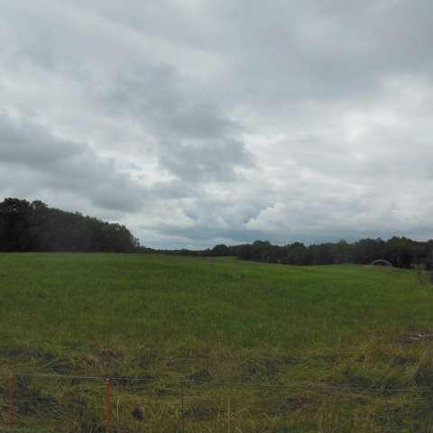 High pasture campsite #2