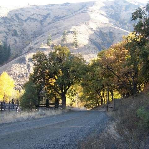 Rimrock Wooded Crossings