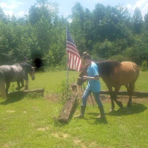 Horse camping ranch ..