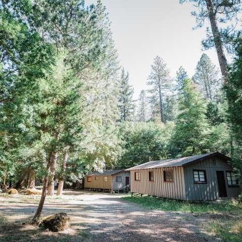 2 Bedroom Forest Cabin