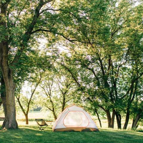 Easy Camping on a Working Farm