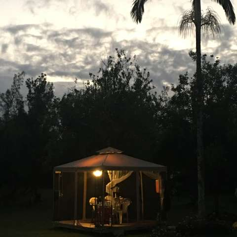 Glamping in Beautiful Kapoho #1