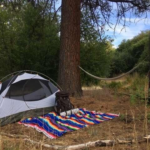 Tucannon River Camping