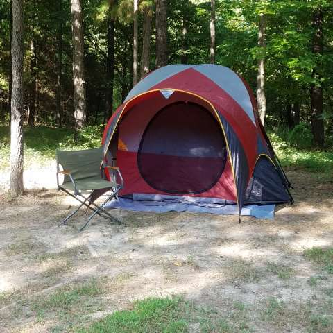Primitive woods camping
