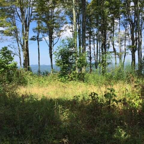 Haw Ridge, Mars Hill NC