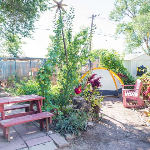 Camp on a City Farm