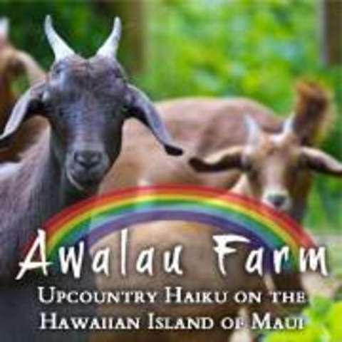 Awalau Farm