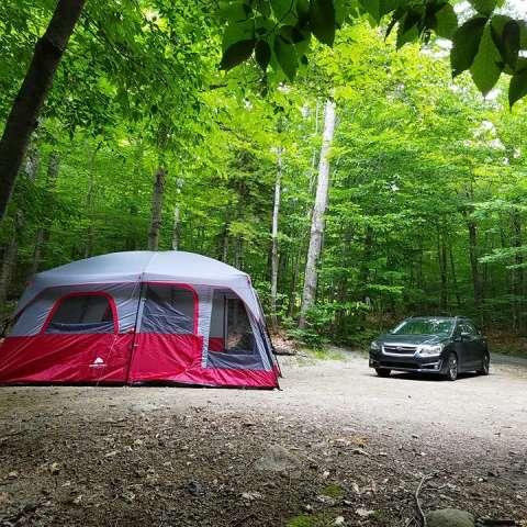 Sawyer Pond Shelter & Tentsite