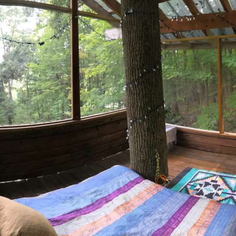 Tree House in the Woods
