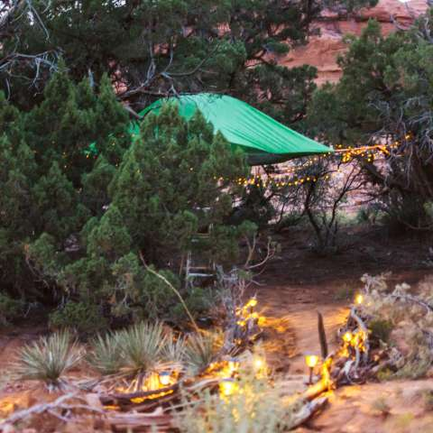 Tentsile - The Tree-House Tent